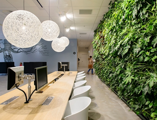 Modulogreen-Living-Wall-Amelo