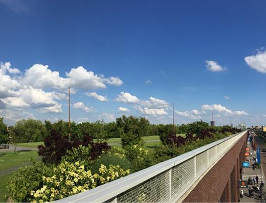 Dakpark Rotterdam. Volgens Rotterdam het grootste dakpark ter wereld!